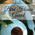 Easy backyard decorations- birdhouse gourd. Just drill hole and paint!