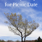 4 Healthy Recipes for Picnic Date