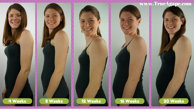 Month to month Pregnancy pictures