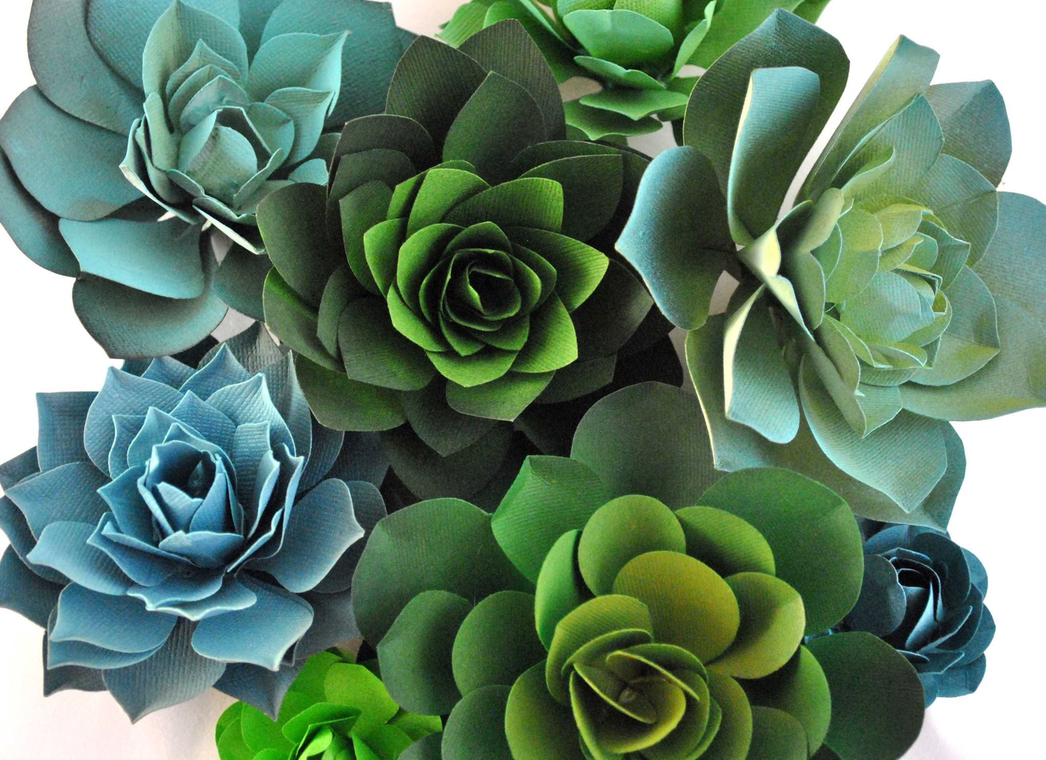 Best gift for her- Succulent plants that will never die! Made out of fine paper by an amazing artist!