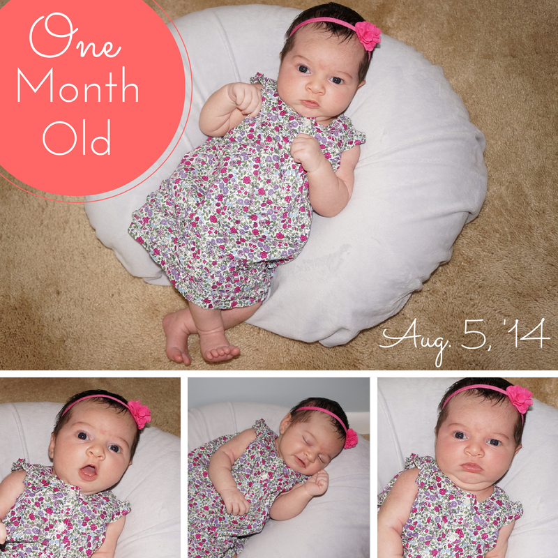 Great Idea For Watching Baby Grow Month By Pictures